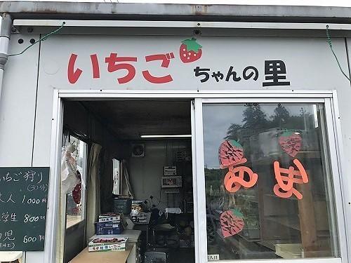 ichigo19 (2).jpg