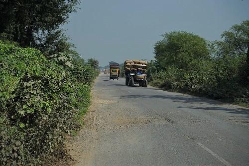 india16 (255).jpg