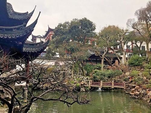 shanghai19 (25).jpg