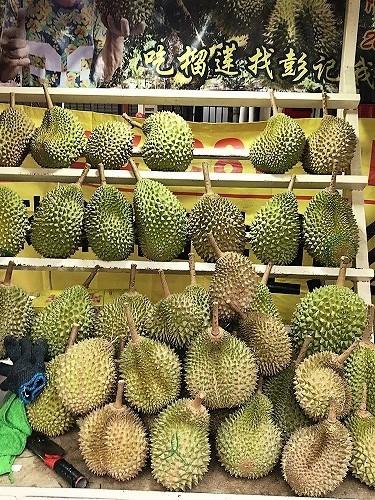 malaysia19 (53).jpg
