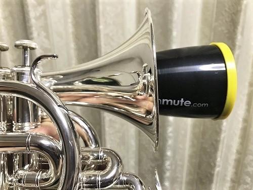 mute18 (8).jpg