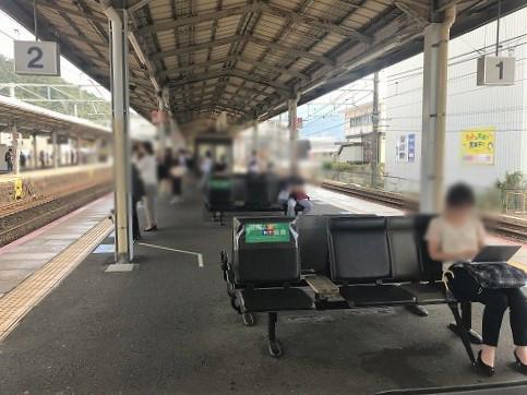 yamashina19 (1).jpg